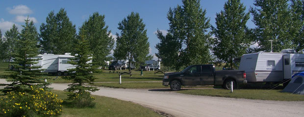 Attention: Campground Managers! Here'S A New Case Study Just For