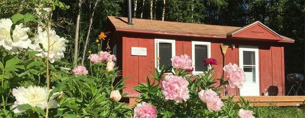 Trapper John's Cabin & Cottages